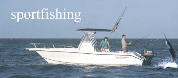 Rent a boat and a captain to enjoy the finest sportsfishing in the world - and save money.